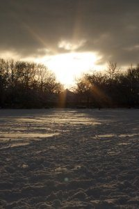 Winter Wonderland 7, Photograph by Jazamin Sinclair