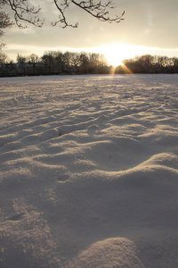 Winter Wonderland 3, Photograph by Jazamin Sinclair